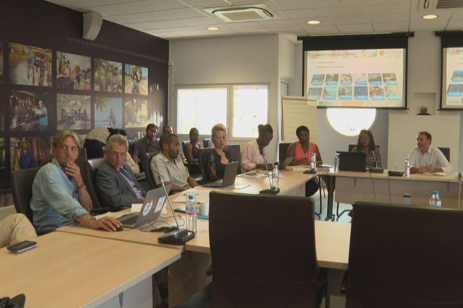 Le Groupe Régional d'Experts sur le Climat (GREC) fait des propositions pour améliorer les politiques publiques éco-conciliables - Guadeloupe la 1ère