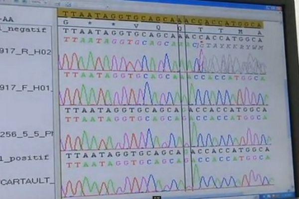 20141206 sequenceur ADN