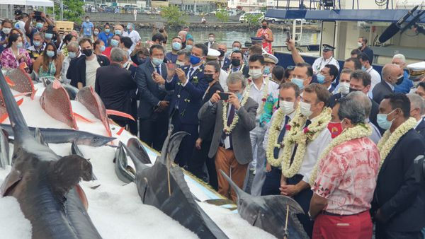 Le chef de l'Etat confirme le choix de la défiscalisation pour développer la filière pêche