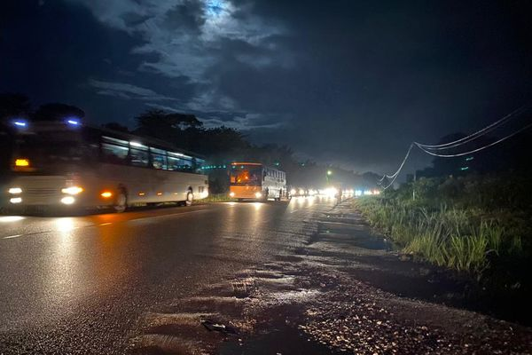 Bus nocturnes