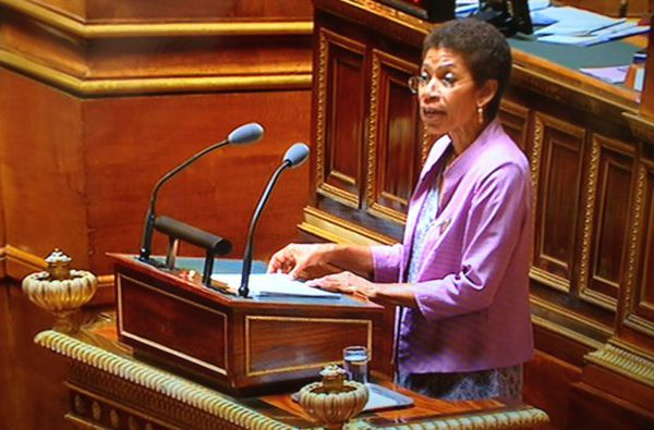 Pau Langevin Sénat 29 juin