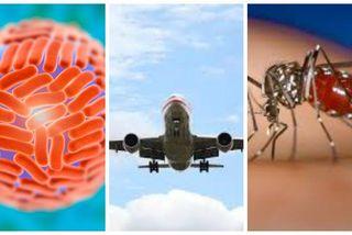 Le Zika voyage grâce aux hommes qui se déplacent et le moustique sur place diffuse le virus