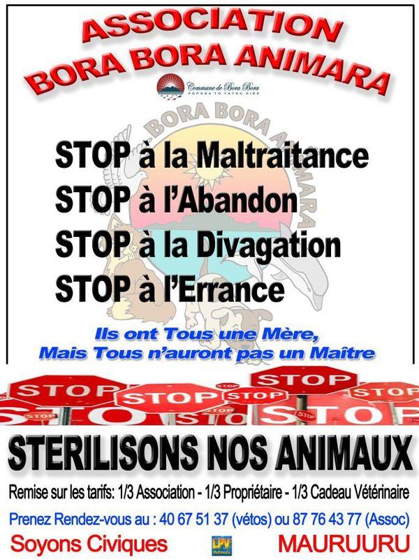 Sterilisation chiens Bora-Bora