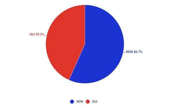 Référendum, résultat par camembert