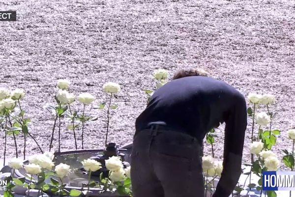 Les roses blanches, symboles de chacune des victimes