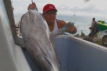 Les pêcheurs redoutent une forte baisse de la consommation de poisson avec la fermeture des frontières liée à la pandémie du covid.