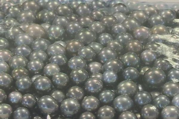 Les perles des Tuamotu et des Gambier aux enchères jusqu'a dimanche