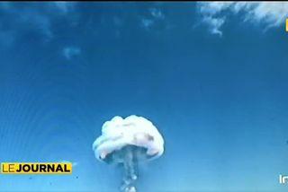 Exposition Nucléaire : 50 ans d'Histoire