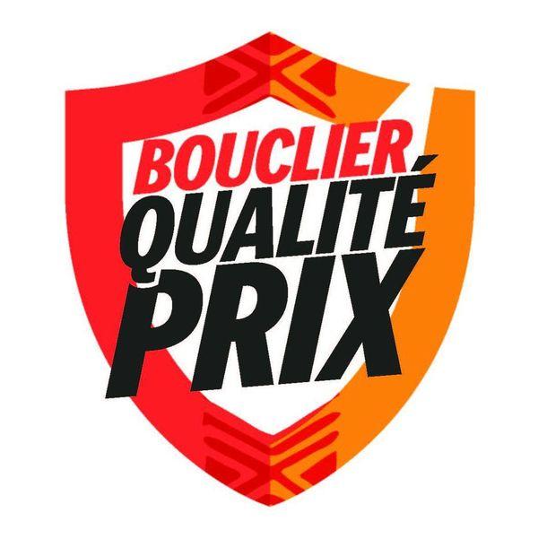 Logo bouclier