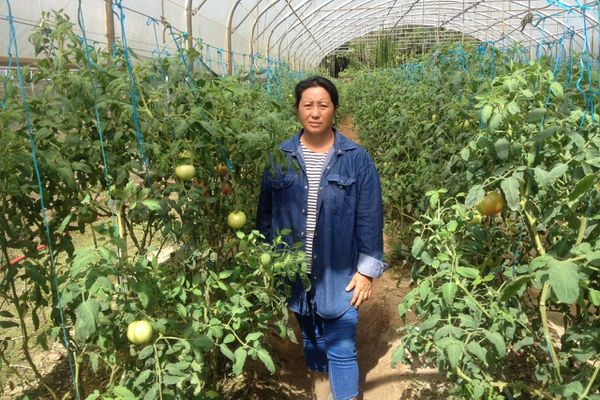Agricultrice Hmong