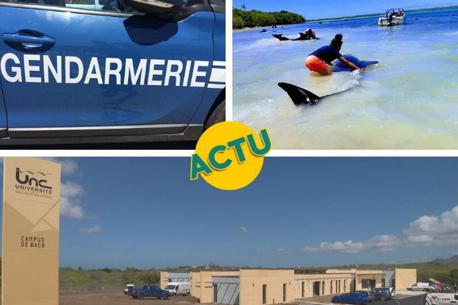 Accident, rentrée et Île des Pins : l'actu à la 1 du lundi 24 février 2020 - Nouvelle-Calédonie la 1ère