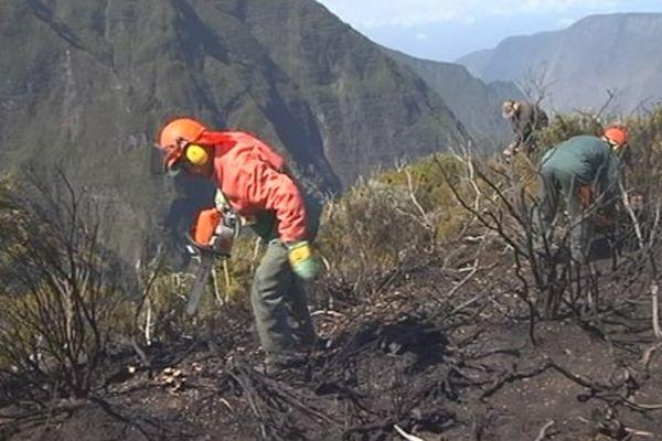 Piton Textor : le feu est éteint mais la zone reste sous haute surveillance