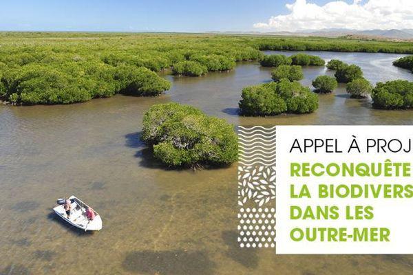 appel à projet biodivesité