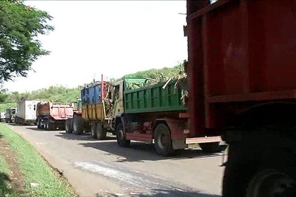 Bejisa et déchets verts