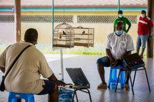 Concours de chant de Pikolèt en Guyane, le 28 novembre 2020