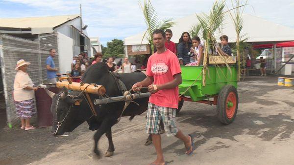 42ème Foire de Bras-Panon : fréquentation en baisse