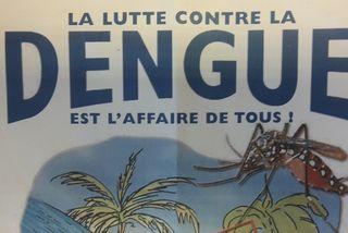 Affiche dengue