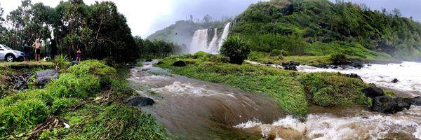 Berguitta crue de la ravine de Vincendo