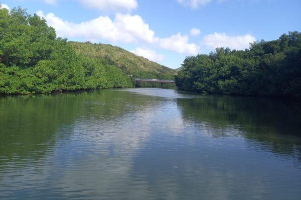 Rivière-Pilote / rivière / cour d'eau