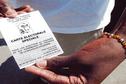 Les élections provinciales de Nouvelle-Calédonie en cinq questions