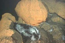 Les coulées de lave du volcan né au large de Mayotte sont recouvertes d'une fine pellicule de fer oxydé.