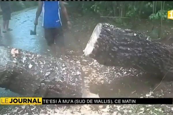 Peu de dégâts à Futuna suite au passage d' ''Ella''