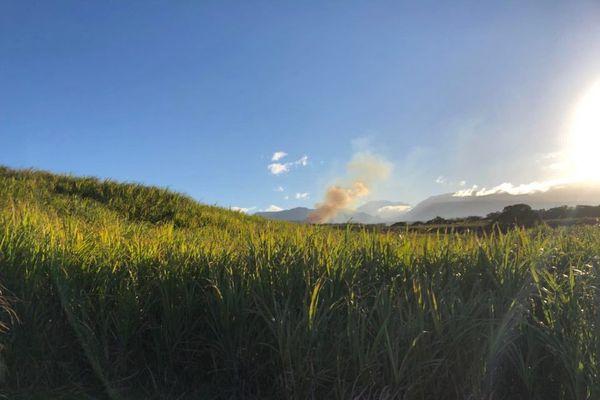 Incendie cannes à Sainte-Anne