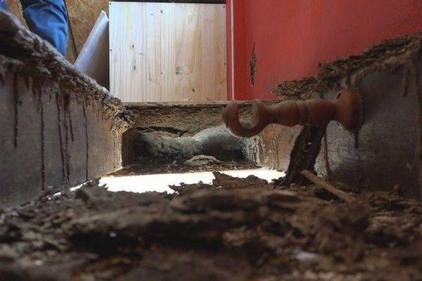 Maison infestée de termites quartier de Beaufonds à Saint-Benoît 040919