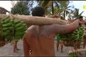 La course des porteurs de fruits : Reportage
