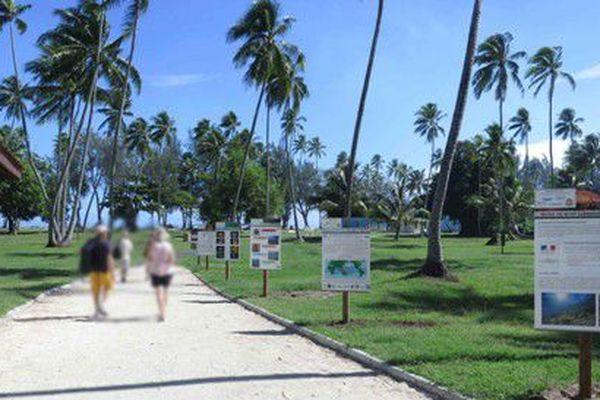 L'expo présente une trentaine de panneaux explicatifs plage Tiahura à Moorea