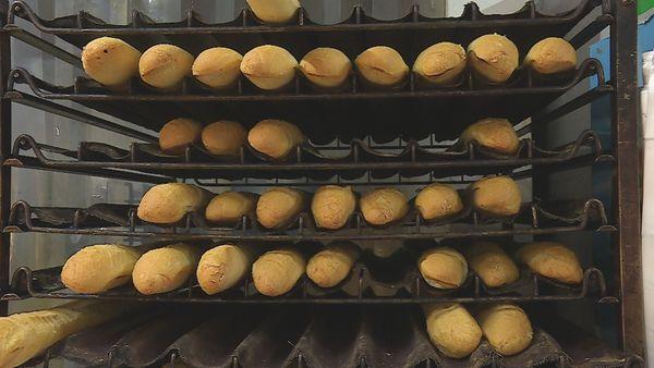 Baguette à 60 cfp : du pain béni pour les boulangers