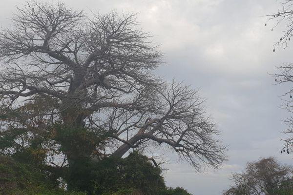 Meteo Mayotte