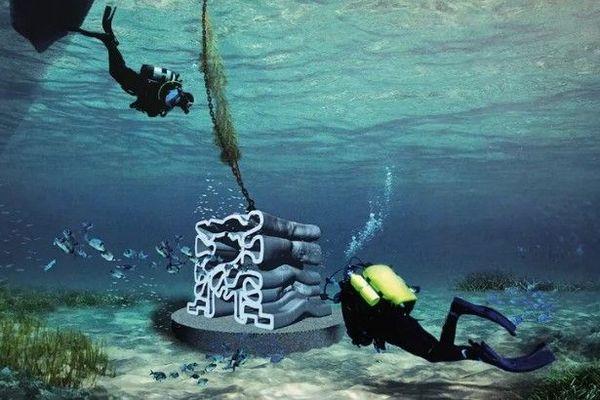 32 récifs vont être immergés le long du trait de cote