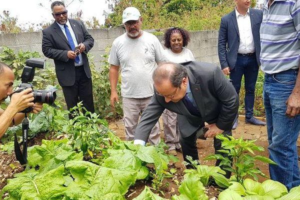 François Hollande visite les jardins de l'association 3i à Saint-Paul