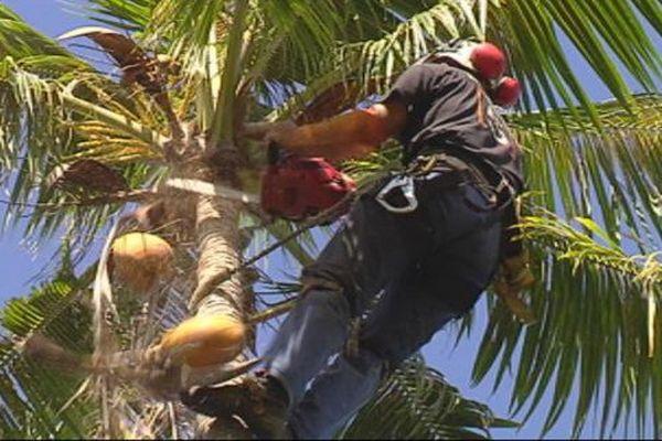 Huahine : un ouvrier meurt par électrocution