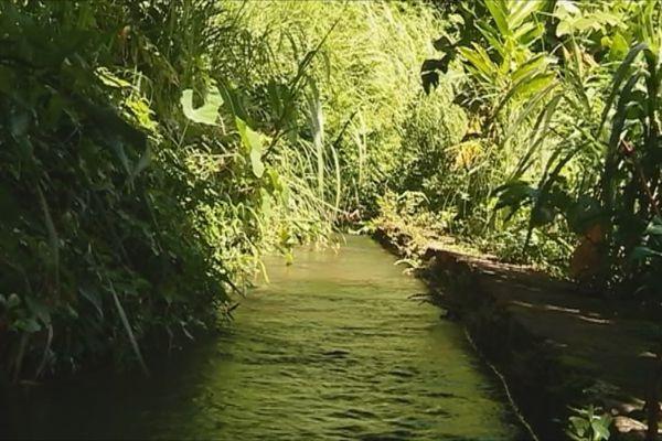 Fonds-Saint-Denis Canal des esclaves
