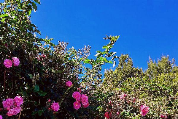 Ciel bleu sur Le Tampon 2 septembre 2021