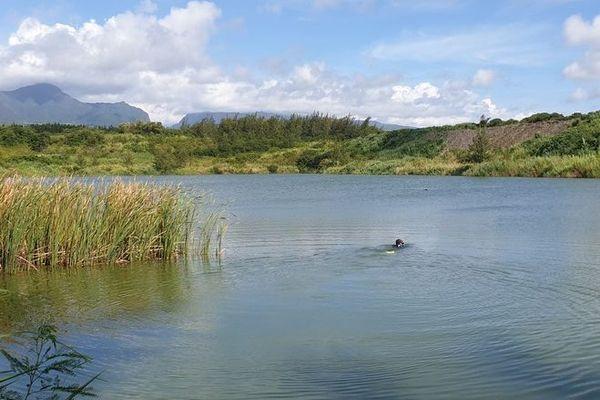 Faits divers noyade Etang Col-Sin à Bras-Panon 050420