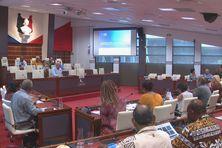 Durant la commission plénière du Congrès dédiée à l'OPT.