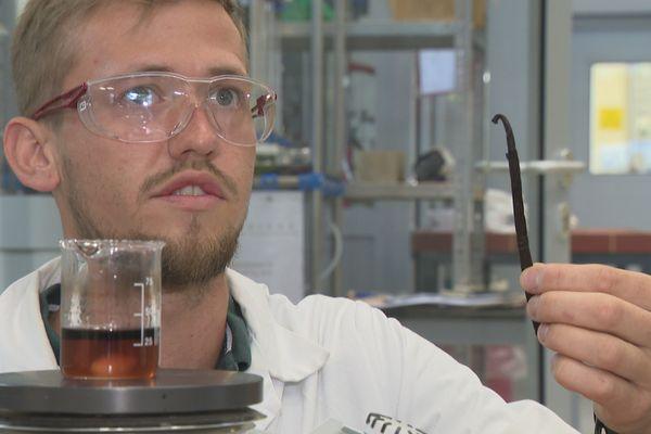 Bientôt des batteries électriques fonctionnant avec de la vanille ?