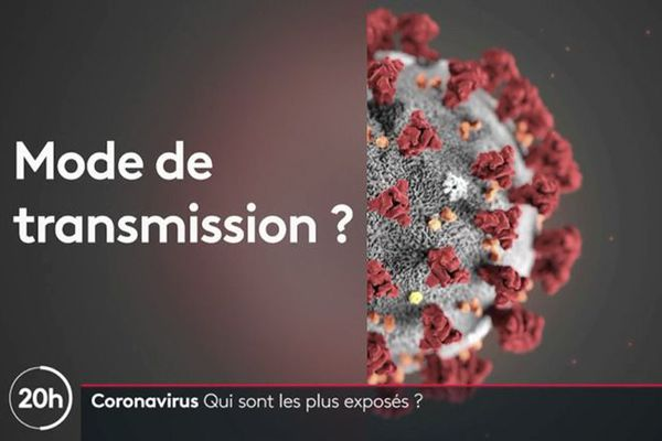 Coronavirus : mode de transmission