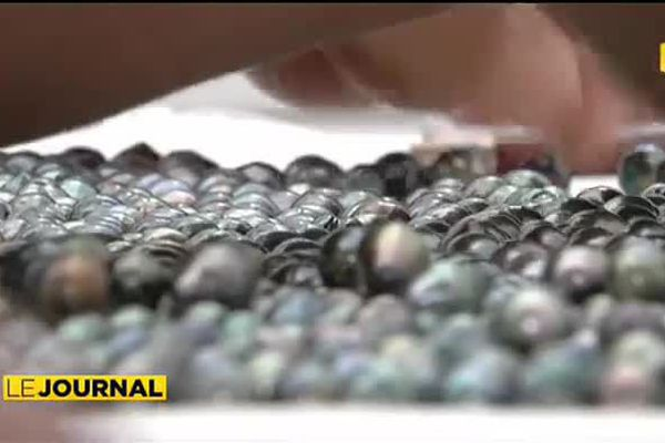 Inquiétude des professionnels de la perle face à la nouvelle loi de Pays