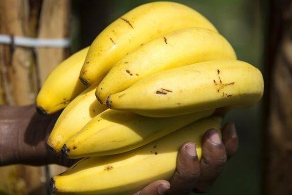 Les Français ont mangé plus de bananes en 2018