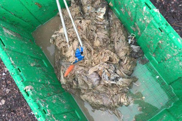Bouchons de lingettes et autres déchets retrouvés dans les canalisations de Saint-Pierre et Miquelon