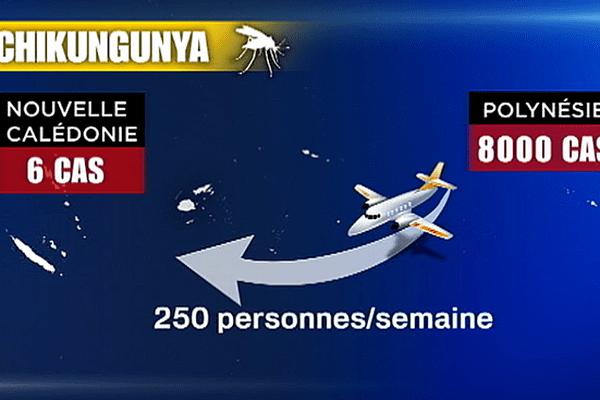 Vols depuis la Polynésie : alerte au chikungunya