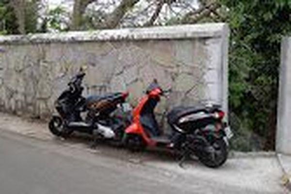 Sentier de la crique de Bas- du- Fort