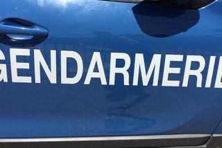 Logo gendarmerie sur une voiture