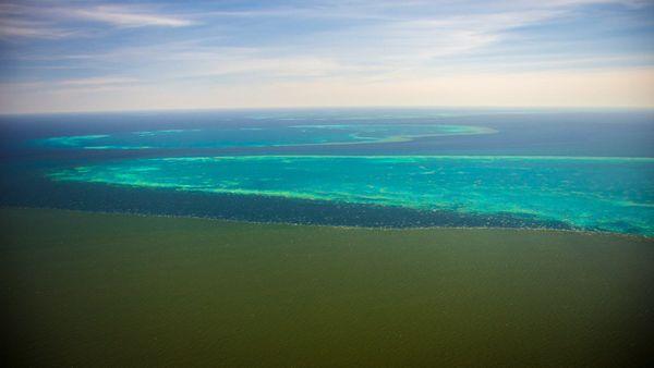 Le panache d'eaux boueuses au contact du Vieux récif, février 2019