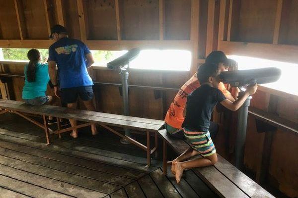 observatoire du marais fournier