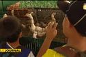 Les scolaires, premiers visiteurs de la foire agricole
